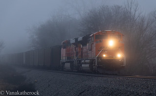 Foggy Coal