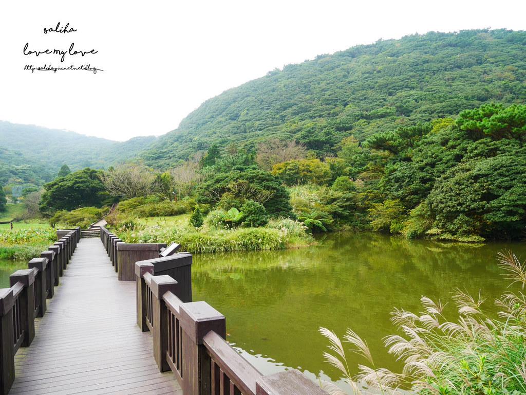台北陽明山一日遊踏青景點推薦大屯自然公園 (15)