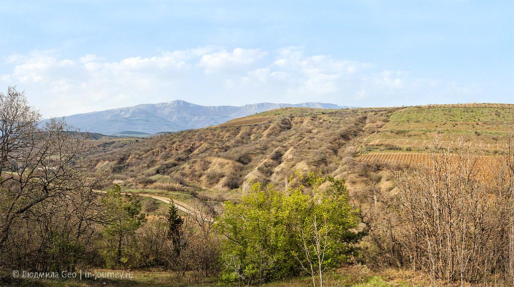 поля в Крыму