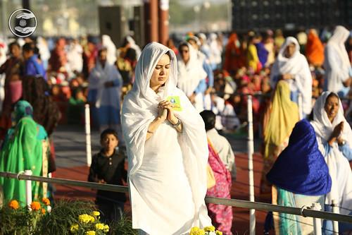 Devotees rendering Sewa with devotion