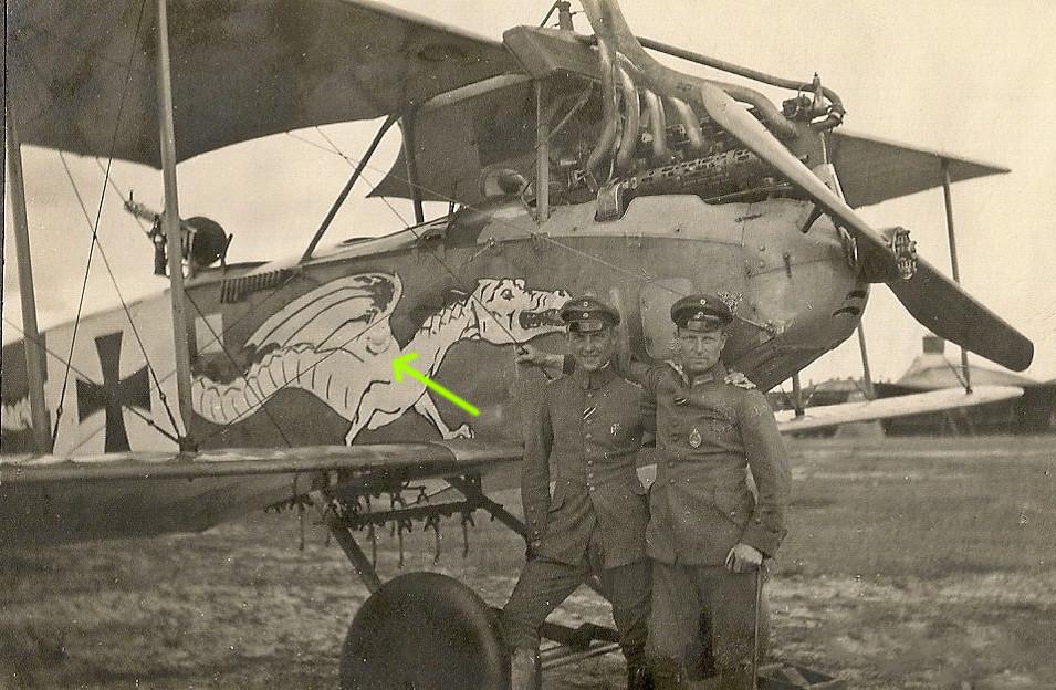 1/48 Albatros C. III   Crocodile et Dragon - Page 2 45566008964_431dc41bf5_b