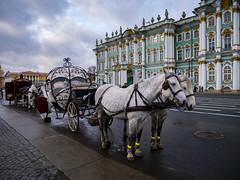 Saint PetersburgSaint - Hermitage Museum (Госуда́рственный Музе́й Эрмита́ж) 25