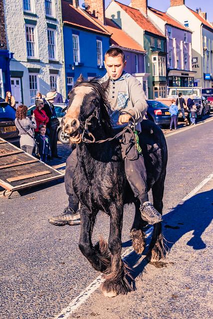 Gypsy Horse Race-4785