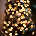 Twist lights by Cheryl3001