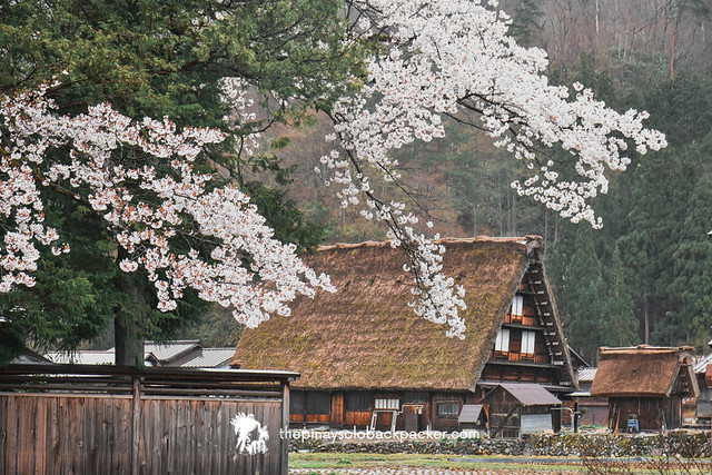shirakawago 3 days itinerary