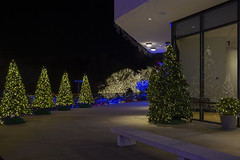 2018 National LDS Temple Holiday Lights  (84)