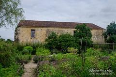 Jardin de l'ancienne abbaye de Bonnefont - Photo of Cazeneuve-Montaut