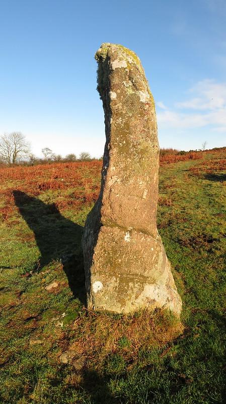 Menhir on Butterdon Hill (Moretonhampstead)