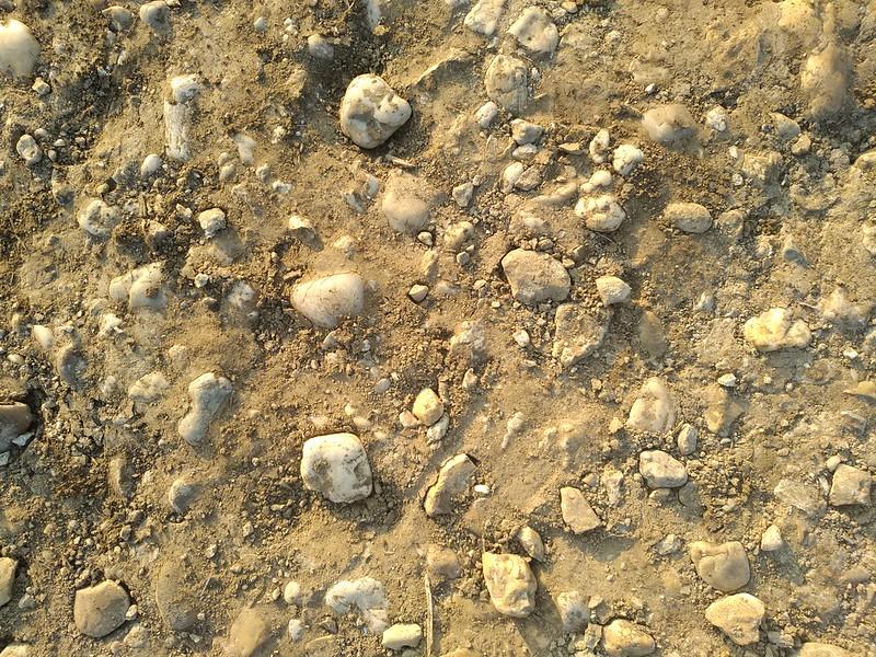 Ground Texture 8