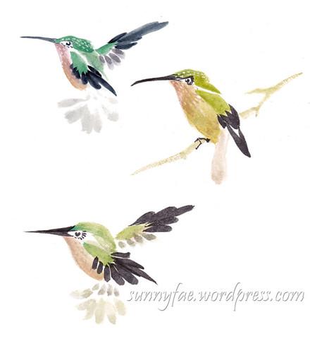 hummingbird Lucy Wang tutorial