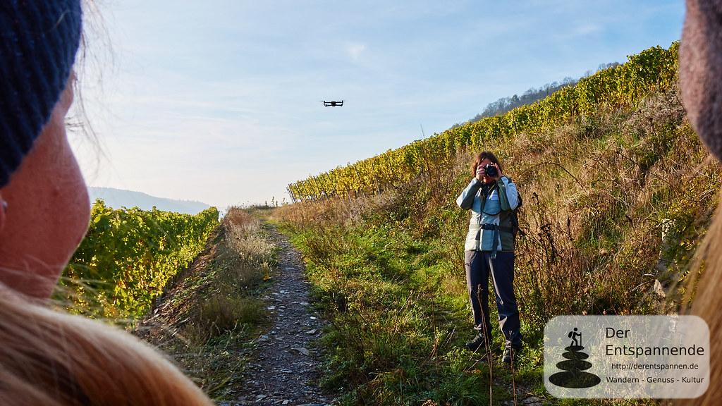Bloggerwandern Rheinland-Pfalz 2018 an der Mosel