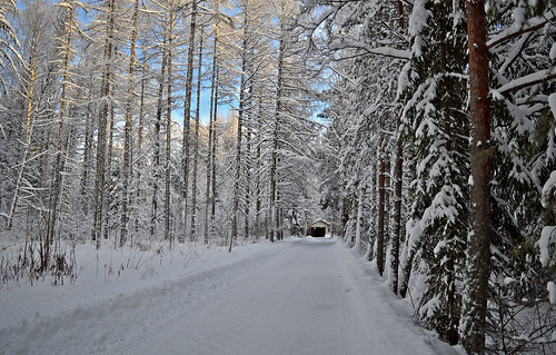 Winter wonderland. Finland 2019.