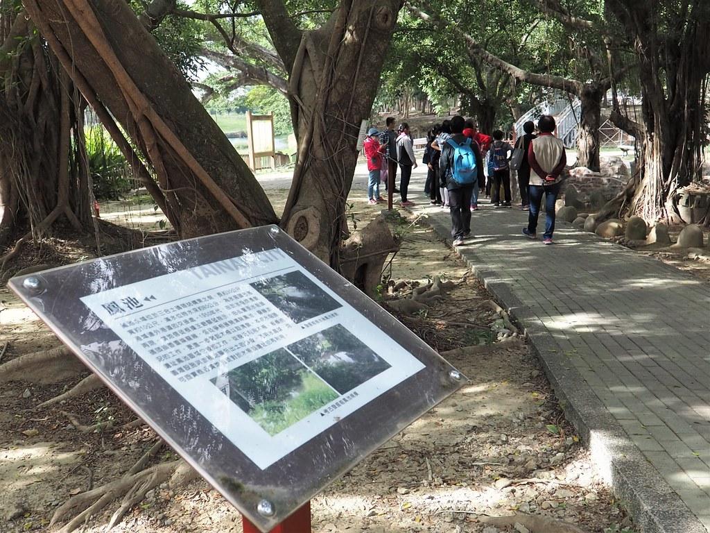 麻豆食農教育 (14)