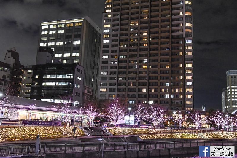 目黑川聖誕點燈 (冬之櫻花)-2