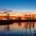 Sunrise, Larbert Loch, Scotland.