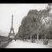 1026 Tour Eiffel Caffenol Print