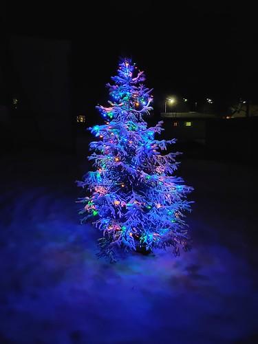 julgran sweden sverige christmastree oneplus6t