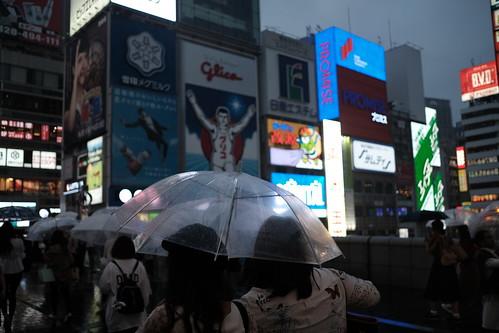 道頓堀の雨