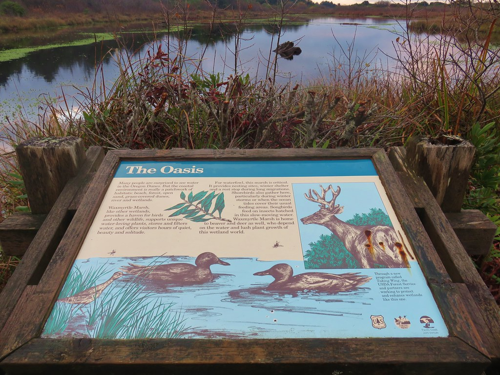 Interpretive sign for the Waxmyrtle Marsh