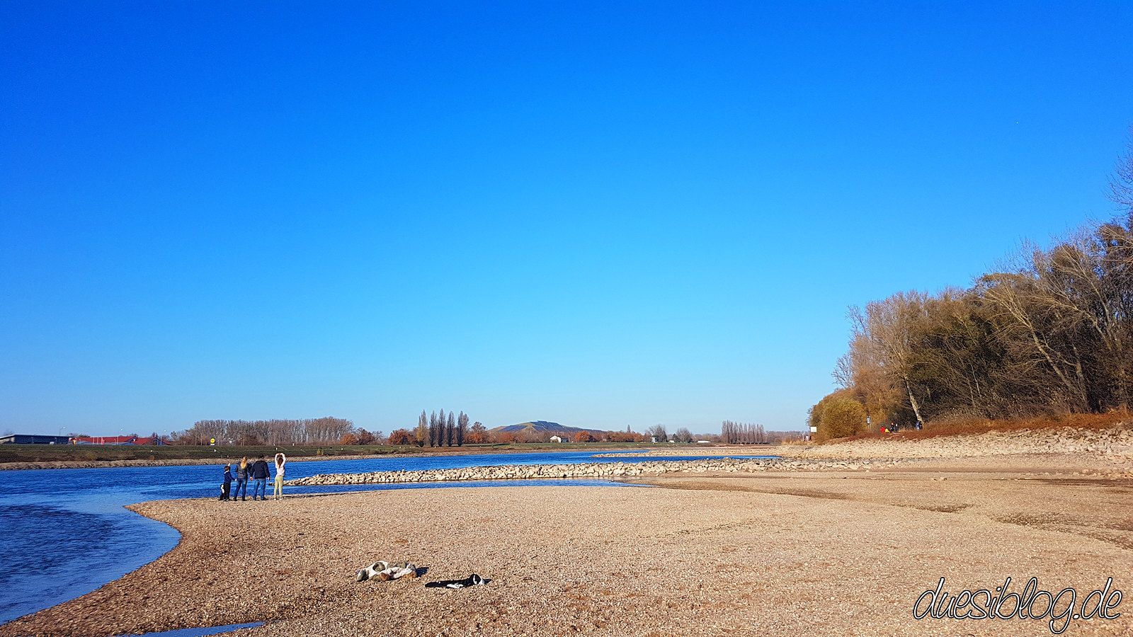Speyer Rhein Niedrigwasser duesiblog04