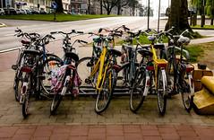 Cycling Image (6)
