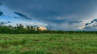 Weather front approaching Casuarina Coastal Reserve, Darwin, NT, Australia