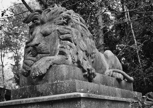 Highgate Cemetery - Nero 2018