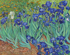 Irises (1889) by Vincent Van Gogh. Original from the J. Paul Getty Museum. Digitally enhanced by rawpixel.