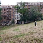 Everett In Isham Park