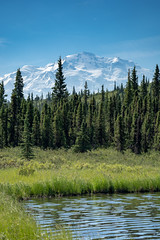 Wonder Lake in Denali National Park on a sunny day. Mount Denali (formerly Mt. McKinley) sits in the background and is fully visible.