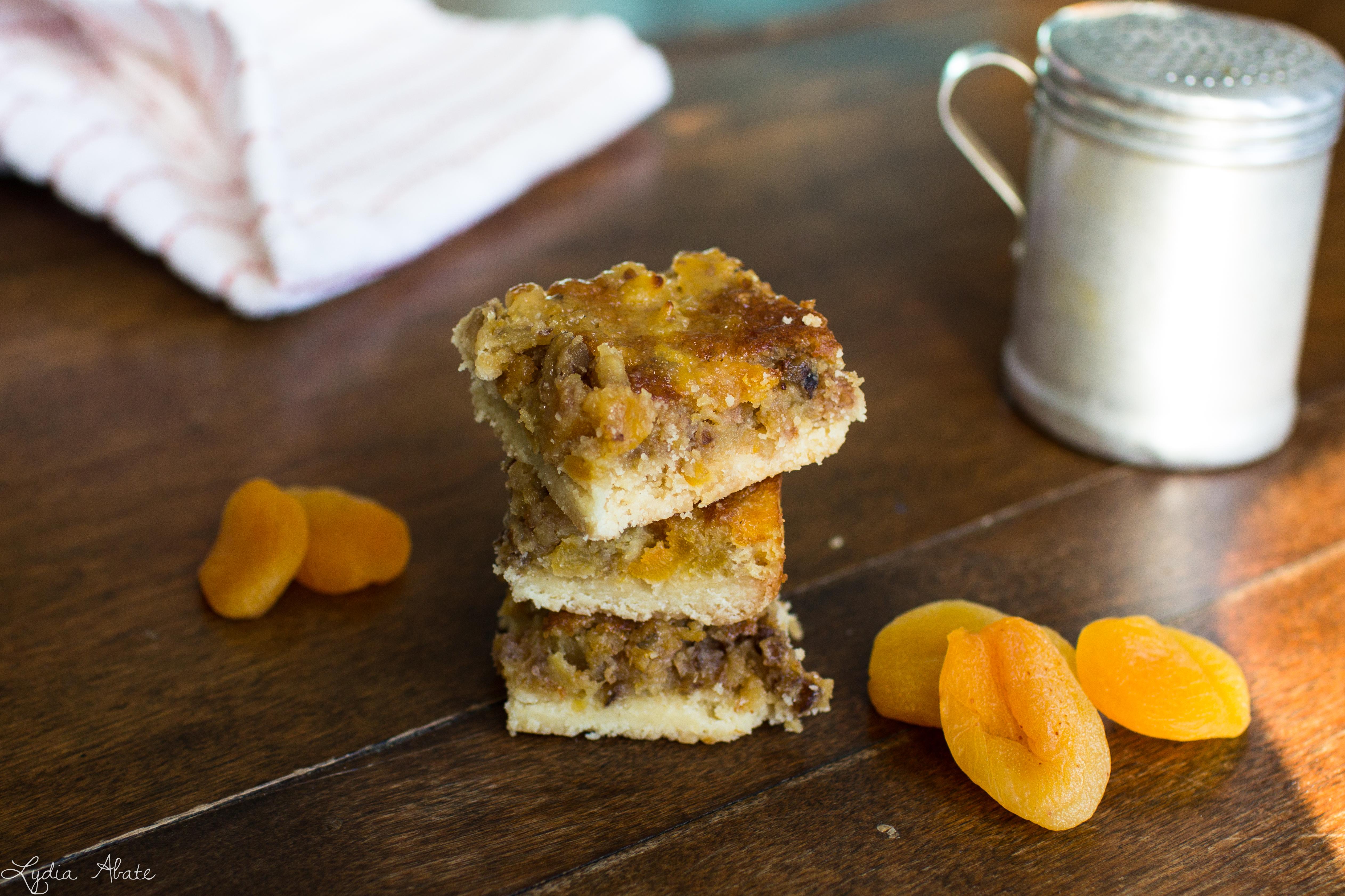 Apricot Squares Recipe-3.jpg