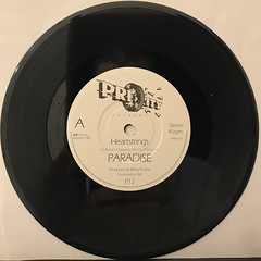 PARADISE:HEARTSTRINGS(RECORD SIDE-A)