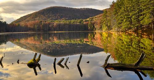 cranberrypond newengland autumninnewengland autumn westernmass massachusetts pioneervalley landscape landscapephotography reflection reflectionphotography green foliage pond sonyvariotessartfe1635mmf4za sonya7ii