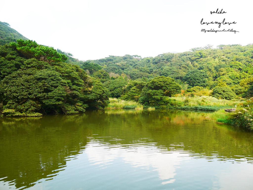 台北陽明山一日遊踏青景點推薦大屯自然公園 (12)