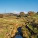 Arnfield Brook