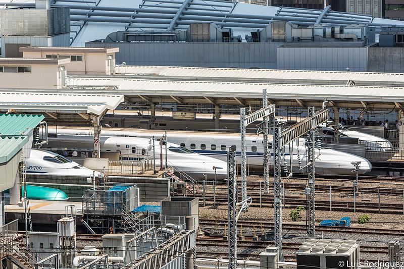 Esperamos ir tan rápido como un shinkansen