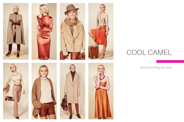 Cool Camel Collection
