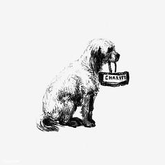 Vintage dog illustration