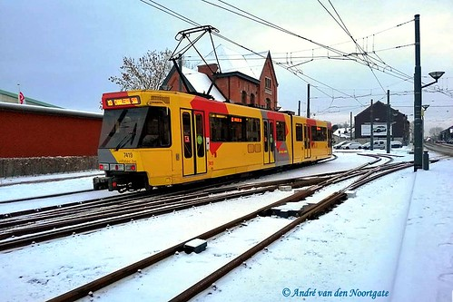 7419-© André van den Noortgate