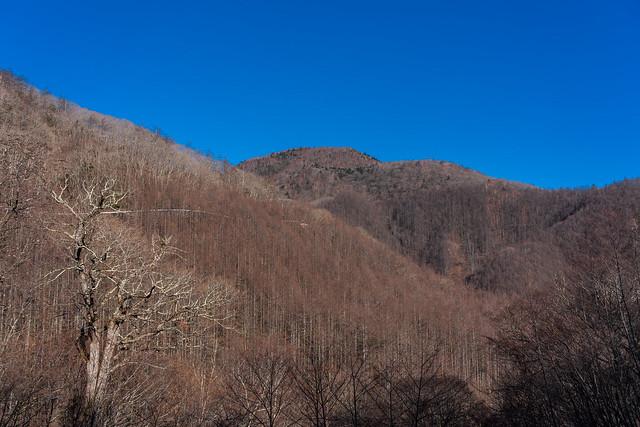 帰路、、林道から見る雁ヶ腹摺山