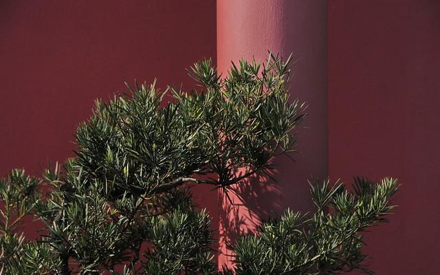 The red pillar, Nikon D300S, Sigma 17-70mm F2.8-4 DC Macro OS HSM