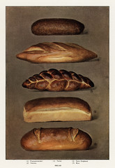 The Grocer's Encyclopedia, (1911), a vintage collection of various types of baked bread loaves. Digitally enhanced from our own antique plate.