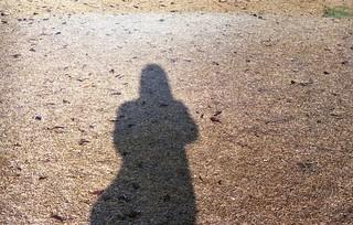 My shadow on autumn grass canvas