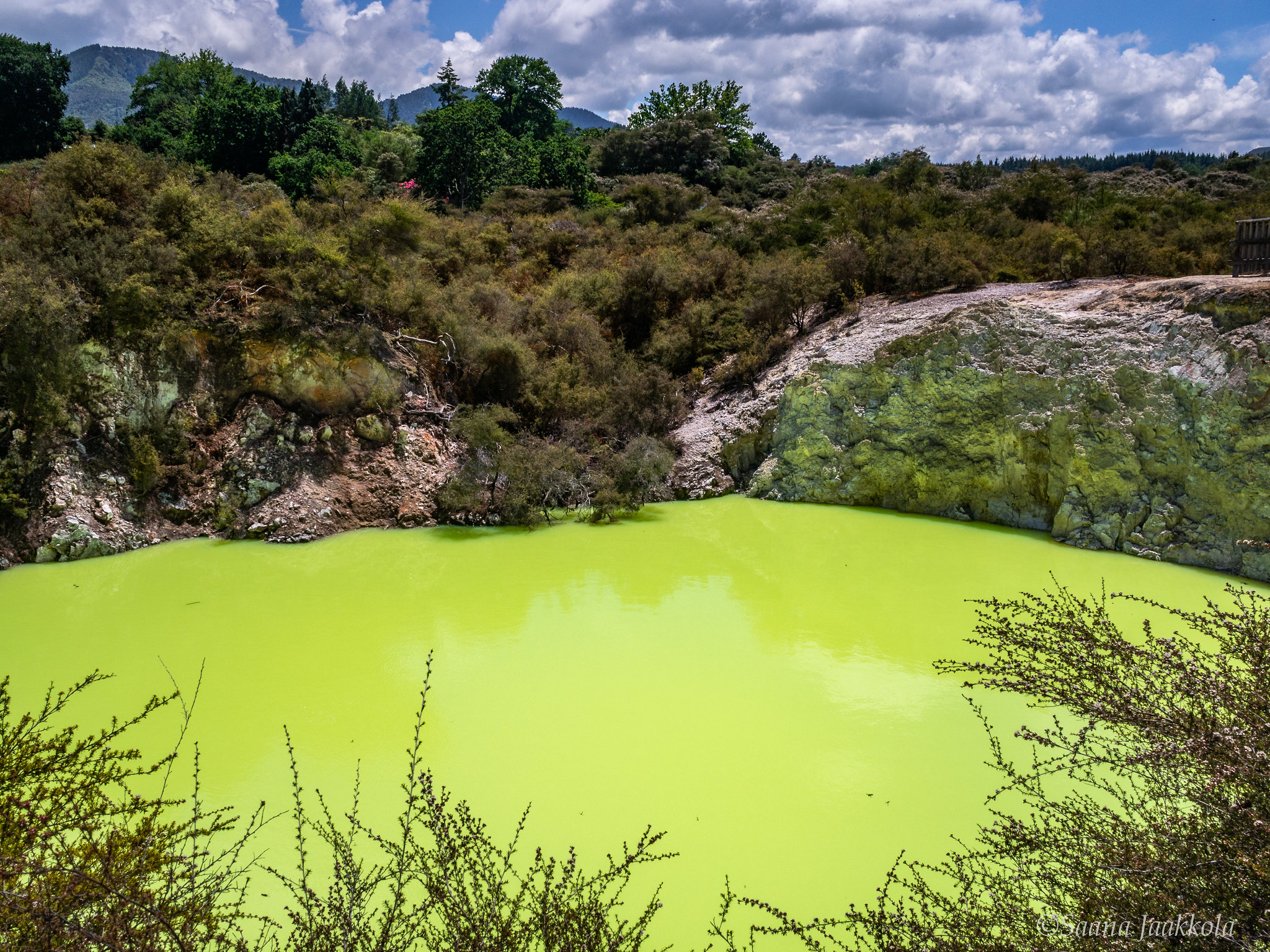 Experiencing Wai-O-Tapu in Rotorua, New Zealand: the poisonous-looking Devil's Bath.