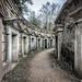 Circle of Lebanon, Highgate Cemetery, London, England by Aethelweard