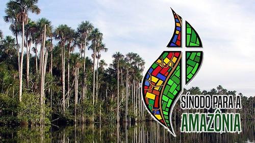 Sínodo de Amazonía