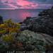 Down East Sunrise by Adam Woodworth