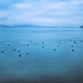 Ich mag den Bodensee, schon weil er mir oft sagt, wie meerweit meine Gedanken sein können.