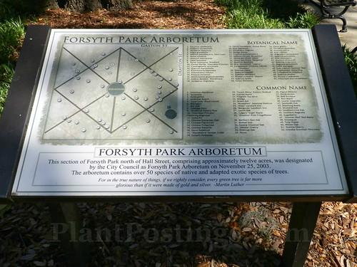 forsyth park arb
