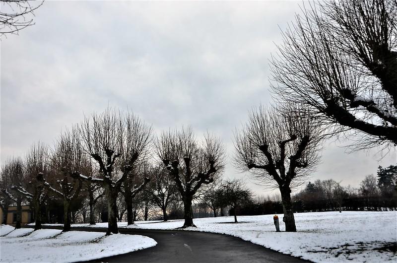 Baselstrasse in Snow 12.01 (1)